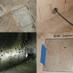 Analysis of Coating Blister Failures and Associated Coating and Substrate Risks